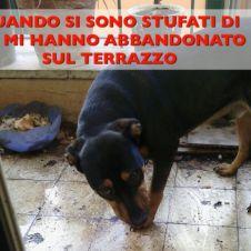 MARTI HA CONOSCIUTO SOLO IL TERRORE Roma