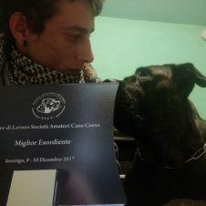 Educazione cane - Addestramento istruzione cinofila Lecco