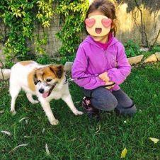 Pensione per cani dog sitter Udine