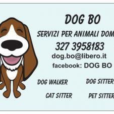 Annunci animali regalo cerco e vendo cucciolo cane gatto for Cerco dog sitter