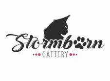Stormborn Cattery Roma