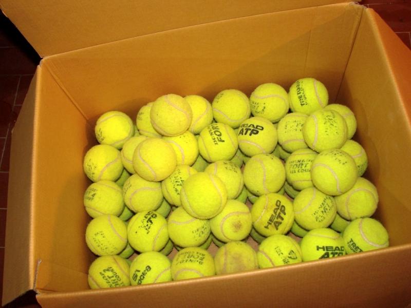 50 palle palline da tennis usate per far giocare i cani Roma id. 16897