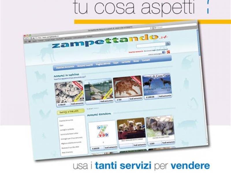 sito annunci animali Milano - Annunci Zampettando