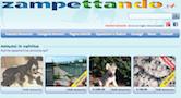 www.zampettando.it