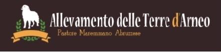 Allevamento delle Terre D'Arneo Lecce - Annunci Zampettando